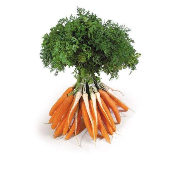 Vegyes zöldség - csomóban