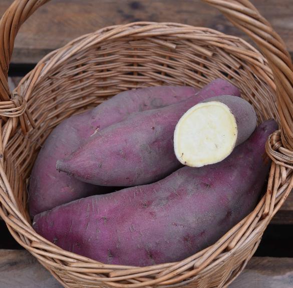 Vegyszermentes lila héjú-fehér húsú batáta