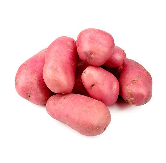Bio piros krumpli - Red scarlet