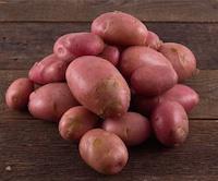 Újkrumpli - piros - átállásos bio
